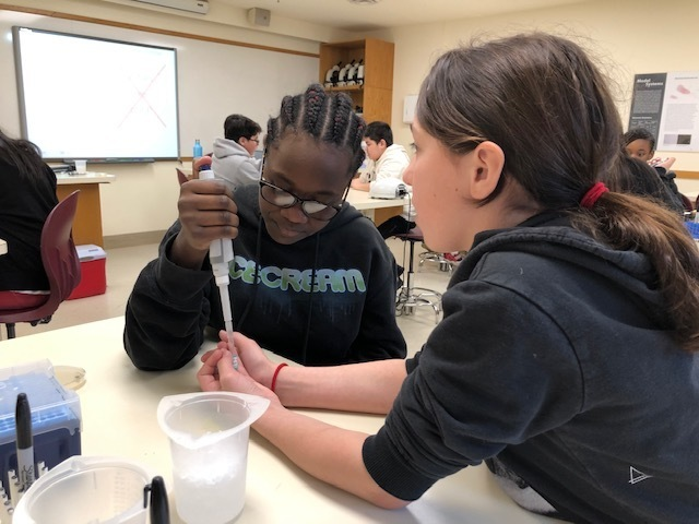Students Dive Into DNA